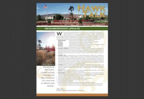 Hawk Talk (Wingfield Springs)