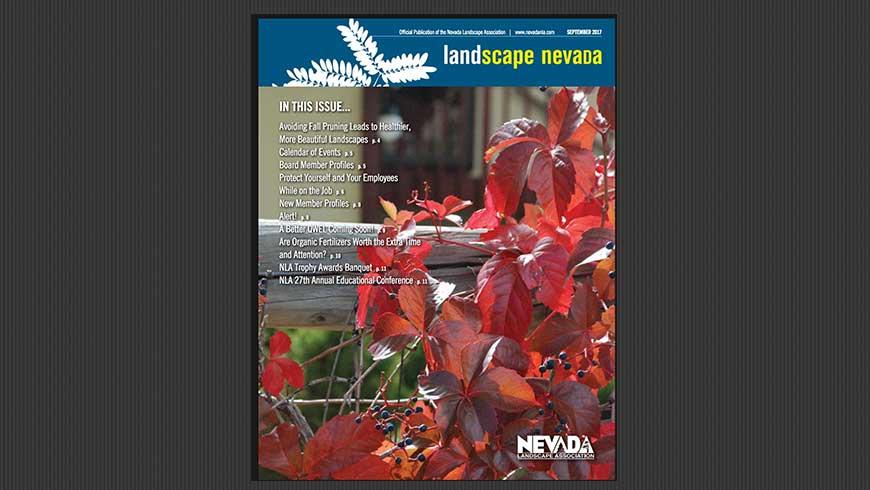 Landscape Nevada